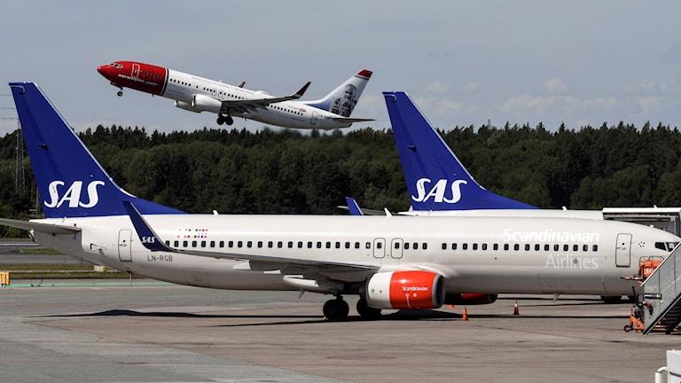 Sas-flygplan på marken på Arlanda flygplats medan Norwegian-plan lyfter i bakgrunden.