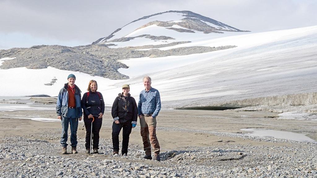 Forskarna i projektet, från vänster: Markus Fjellström, Kerstin Lidén, Karin Angerbjörn, Per Holmlund.