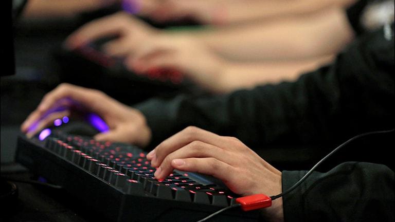 Händerna på flera personer som spelar datorspel med hjälp av tangentbord.