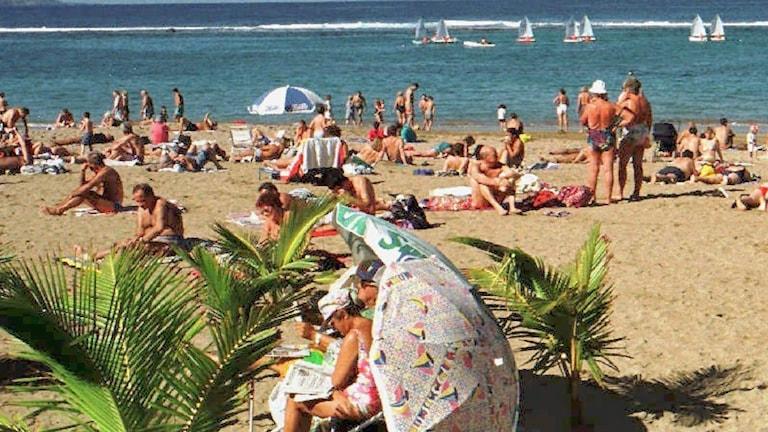 Folk solar på strand i Las Palmas, Gran Canaria, Kanarieöarna, Spanien.