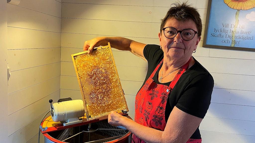 biodlaren Ylwa Christoffersson  visar sin honungsskörd