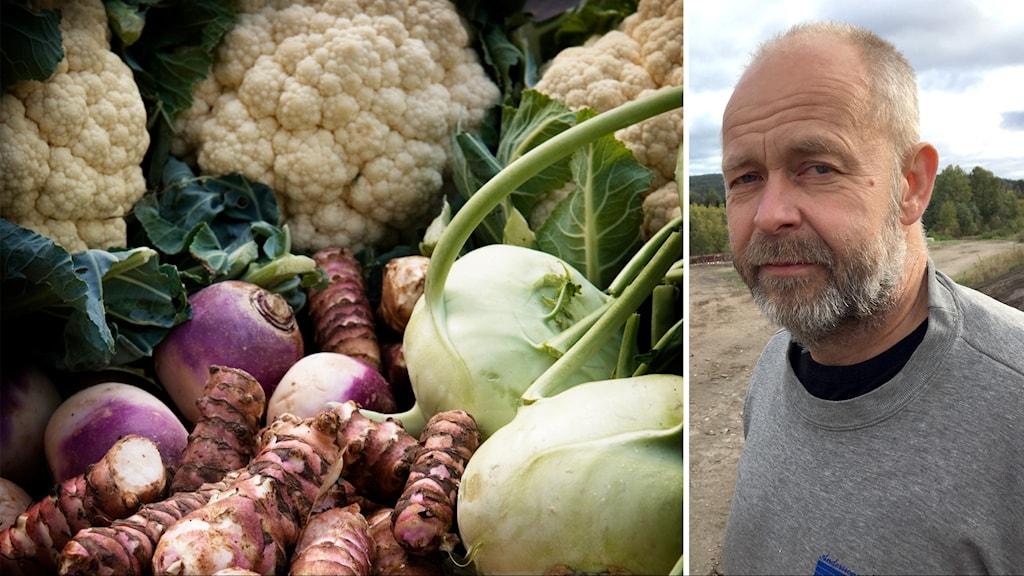 Sven-Erik Eriksson och grönsaker