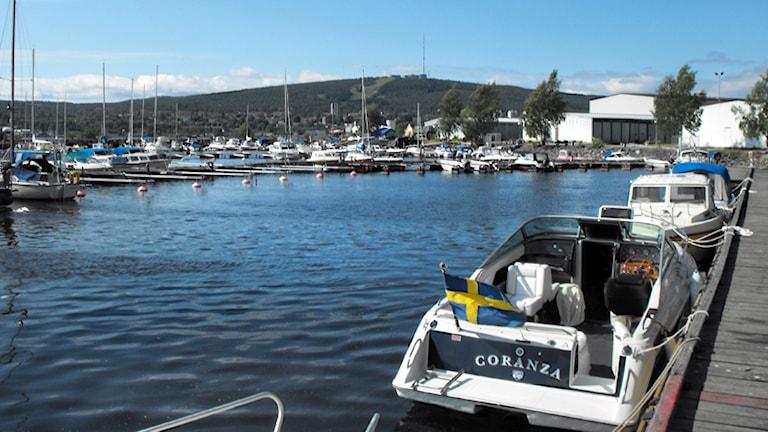 Båtägare uppmanas vara försiktiga vid Gävle hamn. Foto: Christer Jonasson