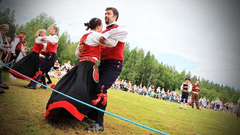 Den 11 juli firar Hälsingehambon 50-års jubileum. Foto: Magnus Hansson / Sveriges Radio