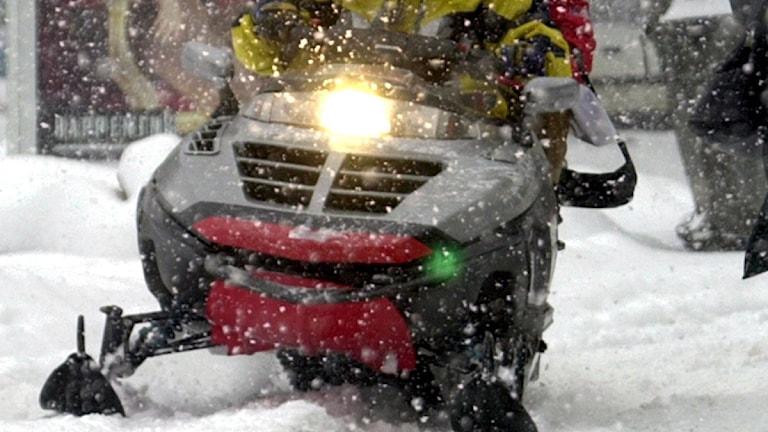 Skoter som kör i snö. Foto: Scanpix