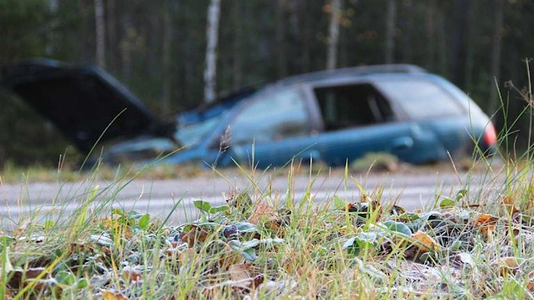 Blixthalkan har orsakat flera avåkningar de senaste dygnen. Foto: Magnus Hansson / Sveriges Radio