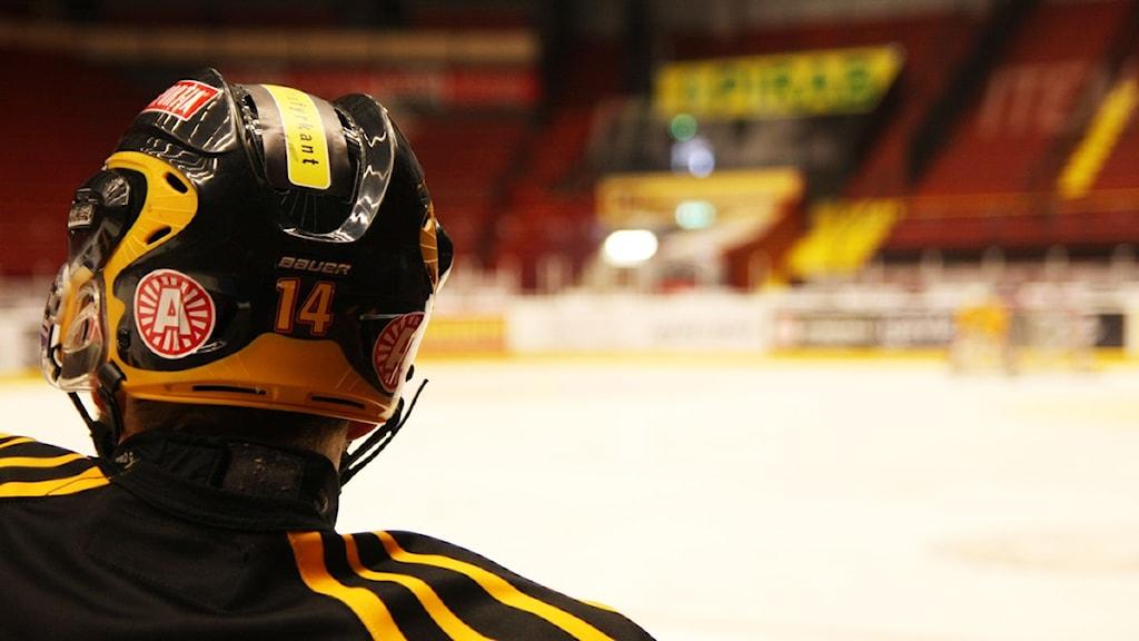 På torsdag spelas den sjätte finalmatchen mellan Brynäs och Skellefteå. Foto: Magnus Hansson / Sveriges Radio