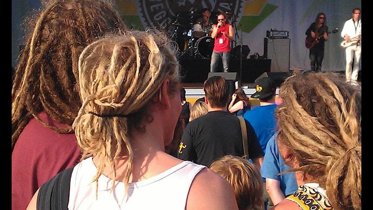LionDub spelar på reggaefestivalen i Furuvik. Foto: Tomas Groop/SR Gävleborg