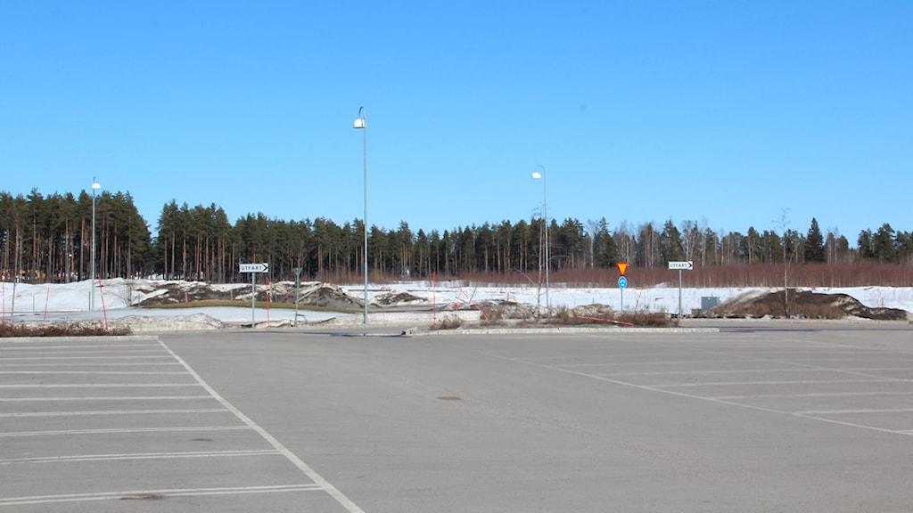 Här - på andra sidan E16 - skulle nya IKEA ha legat. Foto: Joakim Oldéen / Sveriges Radio