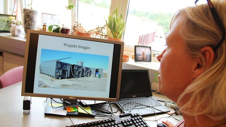 En enklare variant av en biogasanläggning ska uppföras på Långtå i Söderhamn. Foto: Magnus Hansson/Sveriges Radio