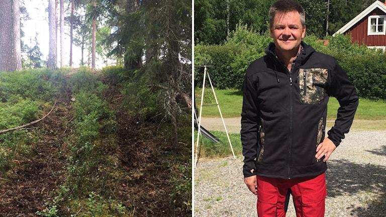 Till vänster, en bild på spåren efter fyrhjulingarna och till höger en bild på Per Mellström från Stora Enso Skog