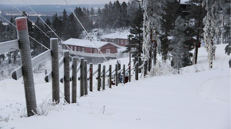 Foto: Magnus Hansson/Sveriges Radio