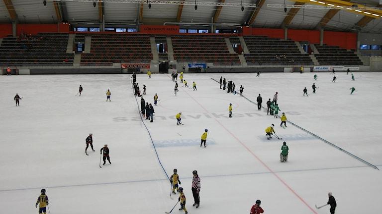 Bandybarn intar Göransson Arena - P4 Gävleborg | Sveriges Radio