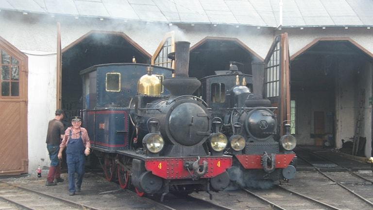 Flera av ångloken kommer ursprungligen från vad som förr hette Dala-Ockelbo-Norrsundets järnväg. Foto: Maria Zander/Sveriges Radio