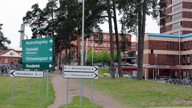 Gävle sjukhus. Foto: Linnea Johansson/Sveriges Radio.