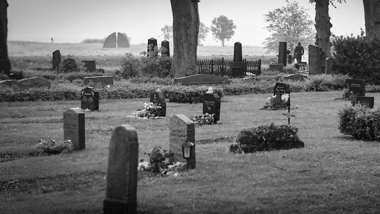 Fler än någonsin dör med narkotika i kroppen. P4 Gävleborgs exklusiva granskning visar sidor av Gävleborgs län som tidigare varit okända för många. Foto: Patrik Theander