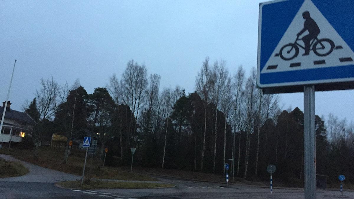 De nya skyltarna som signalerar en cykelöverfart. Foto: Oliver Bergman/Sveriges Radio