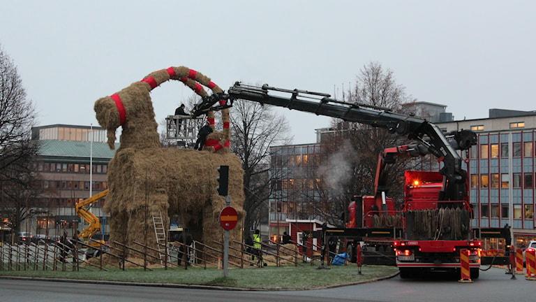 Det jobbas för fullt för att hinna få bocken på plats tills imorgon eftermiddag. Foto: Maria Zander/Sveriges Radio