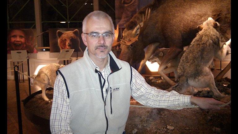 Benny Gäfvert, verksamhetsansvarig på rovdjurscentret De fem stora i Järvsö