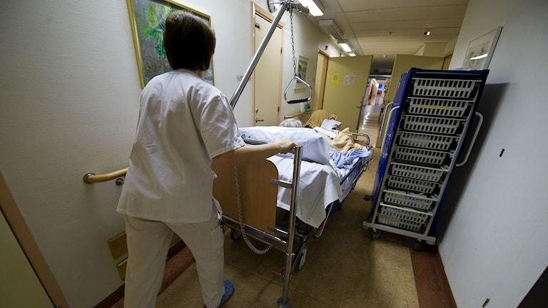 Sjukhuskorridor. Foto: Bertil Ericson/TT