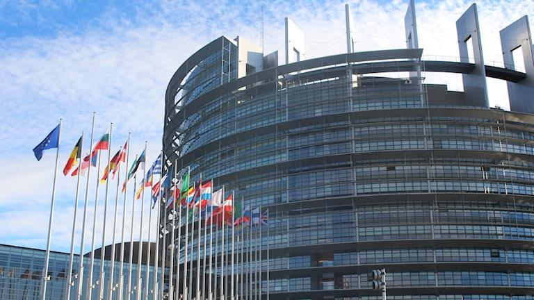 Utanför Europaparlamentet syns flaggor från medlemsländerna. Foto: Linnea Johansson/Sveriges Radio.