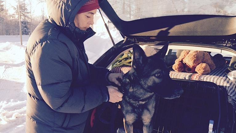 Ella Eriksson och sökhunden Försvarsmaktens Fjälla hjälper till och letar i Bergvik efter Johan. Foto: Agneta Sundberg/Sveriges Radio