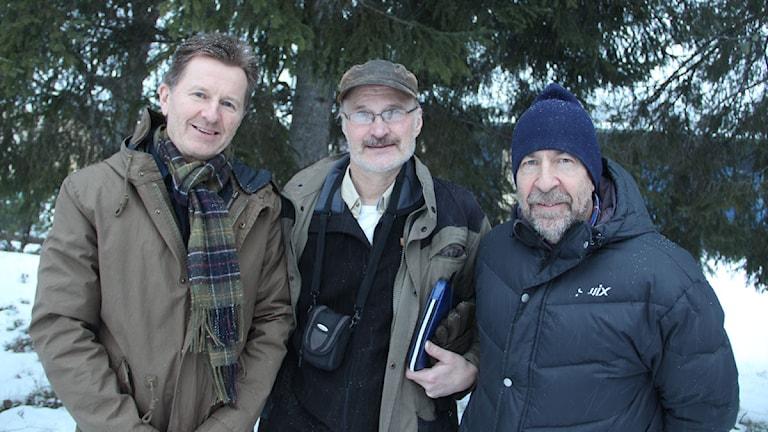 Lars Engström, Erik Broman och Anders Johansson gläds åt Alfta Ösa ok:s framgångar under EM. Foto: Magnus Hansson/Sveriges Radio.