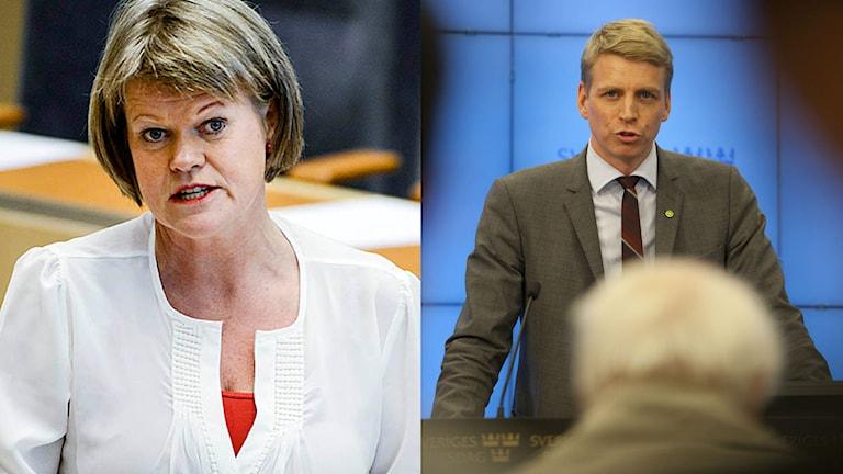 Per Bolund (MP) har nu svarat på Ulla Anderssons (V) frågor om kontanthanteringen runt om i landet. Foto: TT