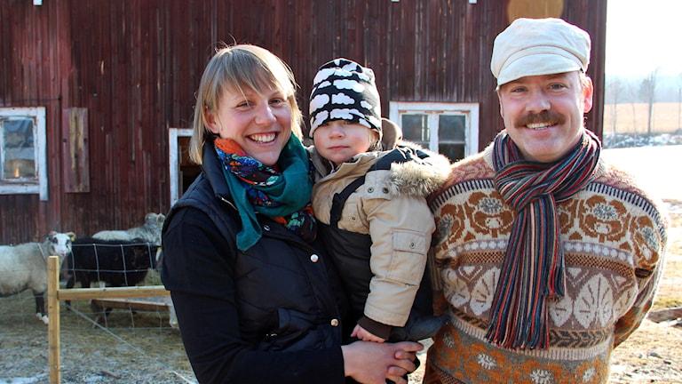 Madelene Håkansson, Christoffer Carlstens och dottern Greta framför fåren. Foto: Linnea Johansson/Sveriges Radio.