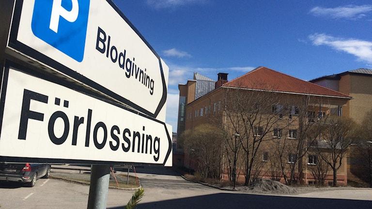 Läget på förlossningen i Hudiksvall har ljusnat. Men bemanningen ligger på en miniminivå och läget är skört inför sommaren. Foto: Magnus Hansson/Sveriges Radio