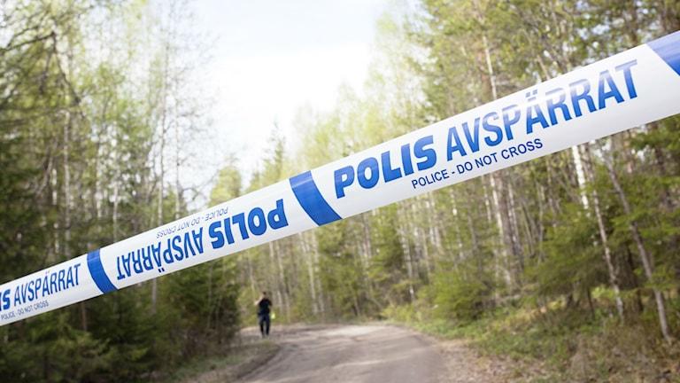 Bilden är från ett annat tillfälle. Foto: Susanne Lindholm/TT.
