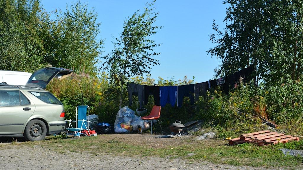 Ungefär 40-50 personer har bott på Alderholmen i Gävle sedan i somras. Foto: Linnea Johansson/Sveriges Radio.