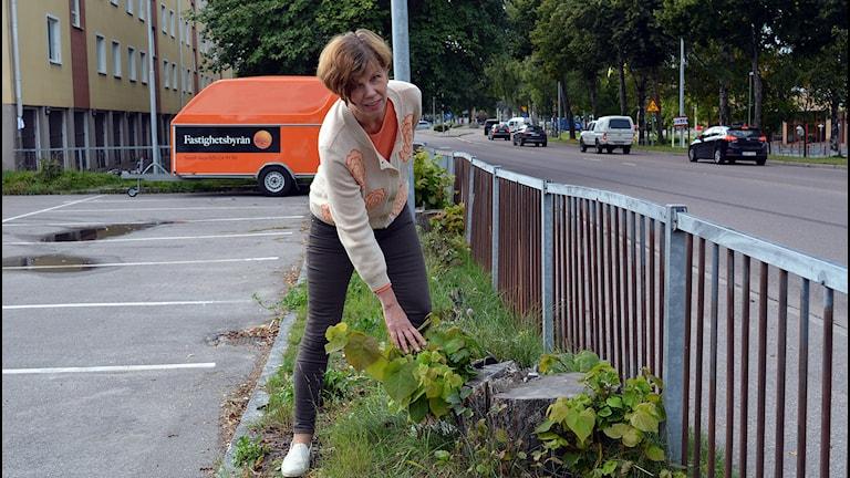 Bara stubbar återstår, konstaterar Sandvikens stadsarkitekt Helena Tallius - Myhrman. Foto: Tomas Groop/ Sveriges Radio