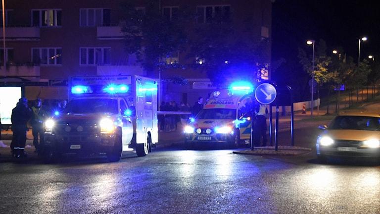 Mellan 15 och 20 poliser arbetar med utredningen. Foto: Daniel Sjöholm