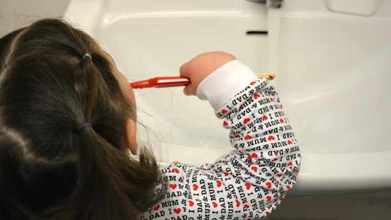 Efter lunchen borsta barnen tänderna.