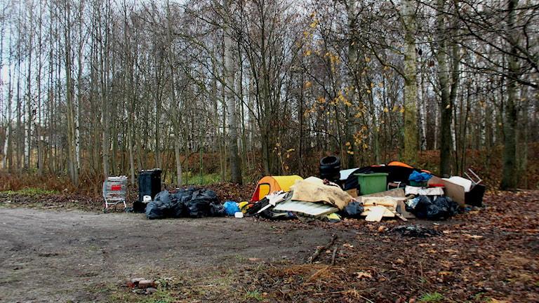 Skräp ligger fortfarande kvar på platsen där Eu-migranter tidigare bott. Foto: Emma Tranevik/Sveriges Radio