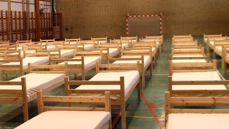 Stenebergsskolans gymnastiksal. Foto: Christian Ploog/Sveriges Radio