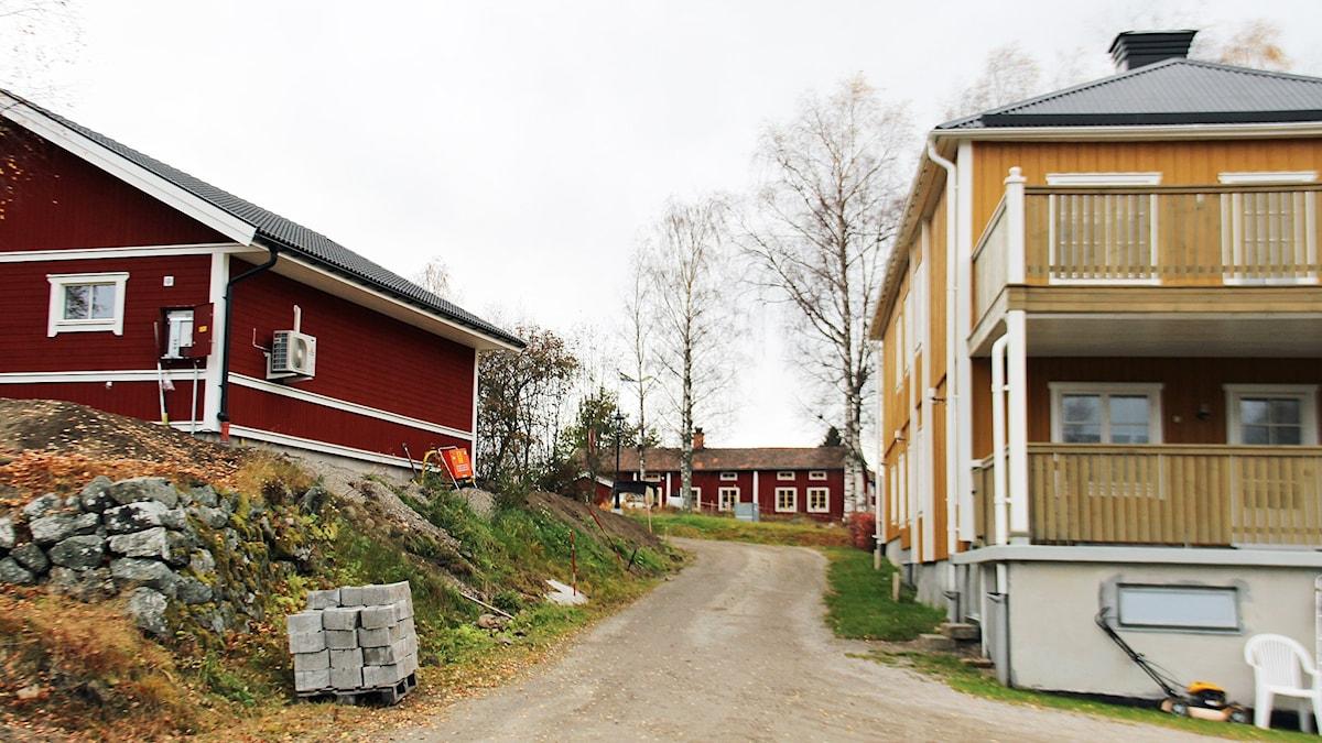 Hamre. Foto: Linnea Johansson/Sveriges Radio.