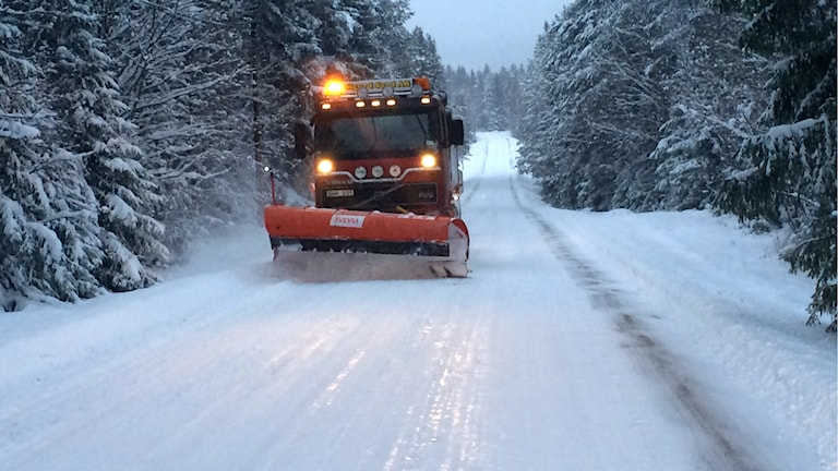 Plogbil plogar vägarna. Foto: Hasse Persson/Sveriges Radio