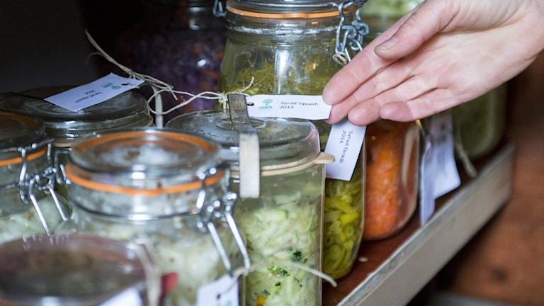 örvaring av konserver och inläggningar i en jordkällare. Foto: Fanni Olin Dahl/TT