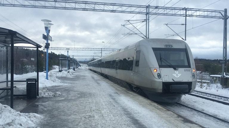 Bald wieder in Kopenhagen zu sehen Foto: Agneta Sundberg/Sveriges Radio
