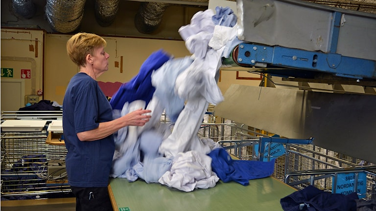 Att sortera tvätt är ett monotont jobb. Foto: Tomas Groop/Sveriges Radio