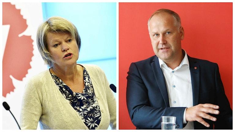 Ulla Andersson ersätter Jonas Sjöstedt på obestämd tid.