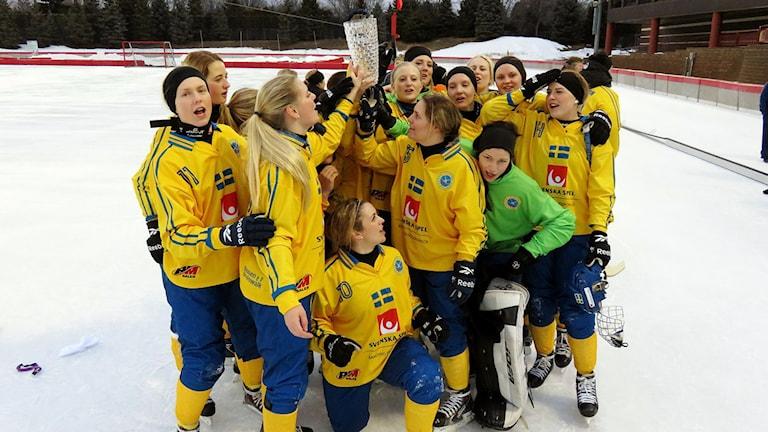 Sverige tog VM-guld i bandy i natt svensk tid. Foto: Fanny Nikula / Svensk bandy