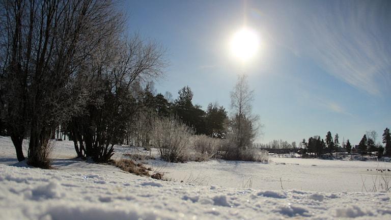 Vinterbild snö sol is sjö markbrand
