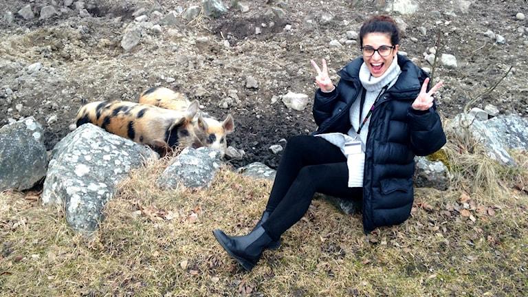 Wenda Hajo hänger med grisarna!