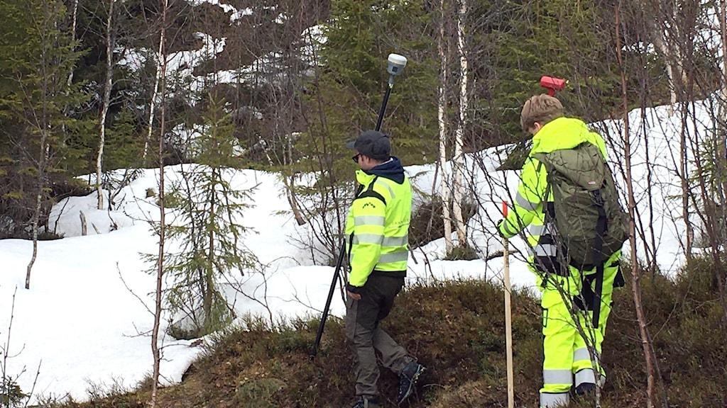 Två män går i skogen med mätinstrument