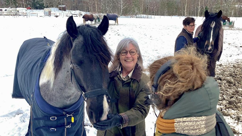 Hästar och kvinnor.
