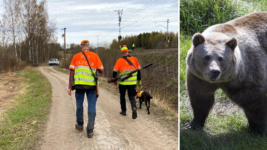 Jägare och björn.