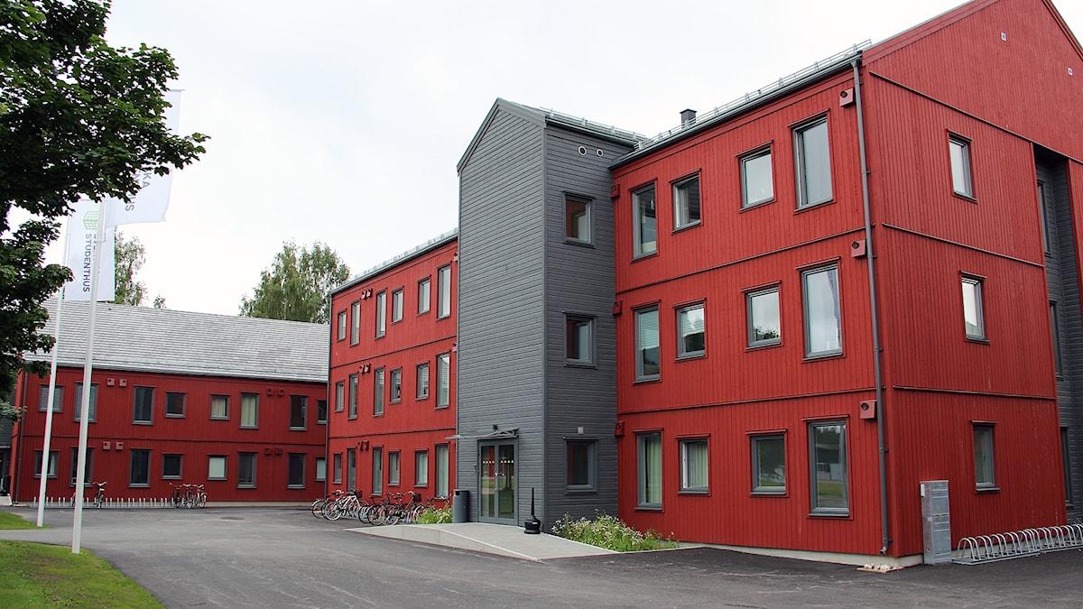 Ett av de nya studentbostadshuset vid Högskolan i Gävle